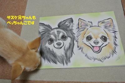 DSC_5065_convert_20151211134249.jpg