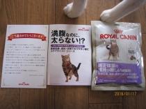 blog160117_3.jpg