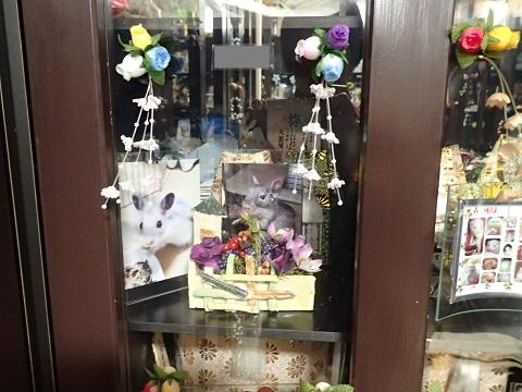 城東動物霊園20160101
