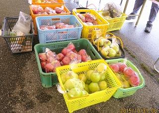 農業祭で売るリンゴ