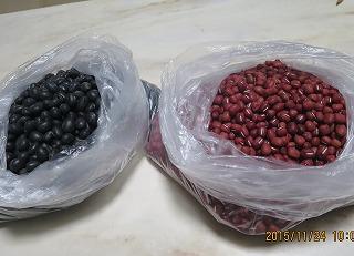 大豆と小豆