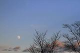 12夜の月
