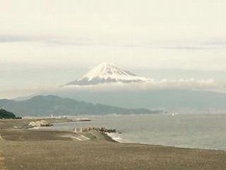 三保の松原から富士山《柚木)11・29日