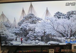 兼六園の雪