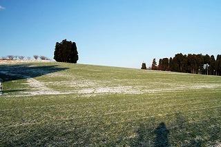 丘の夢牧場