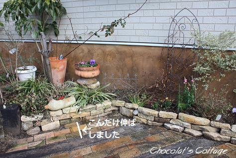 2011Mar09garden2.jpg