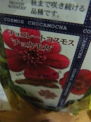 syukusyo-RIMG0401_20151103172900171.jpg
