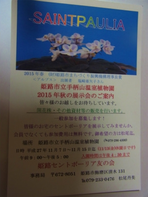 syukusyo-RIMG0426.jpg
