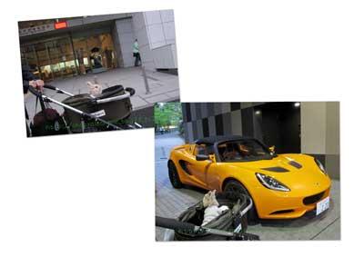 IMG_8833copy.jpg