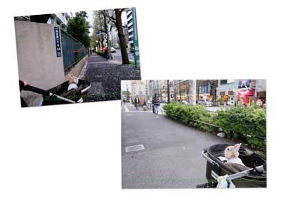 IMG_8859copy.jpg