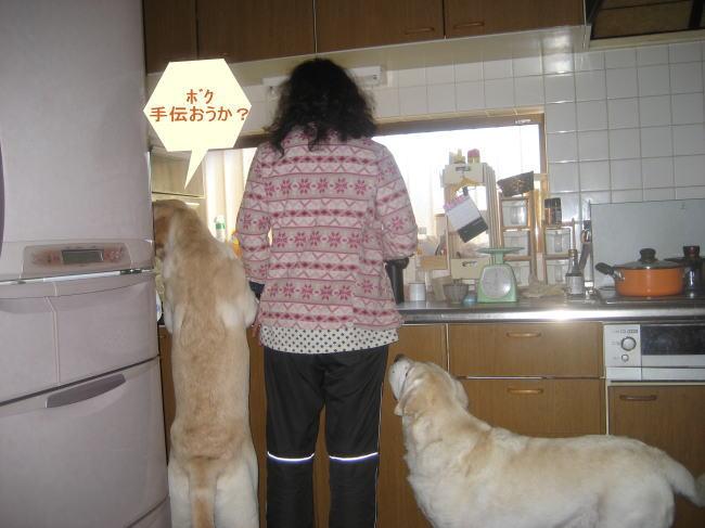 hキッチン1
