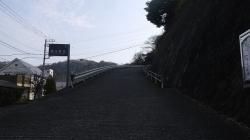 20160305田浦梅林2