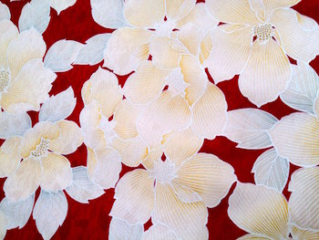 16-01-05-10-04-21-535_photo.jpg