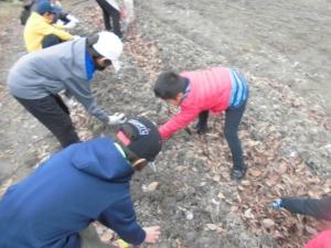 20151205休業日_畑作業 (1)