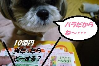 宝くじ2015