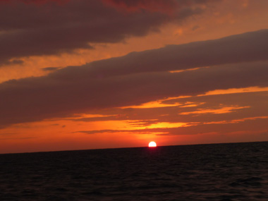 つり 船 フグ カワハギ 日の出 花夢