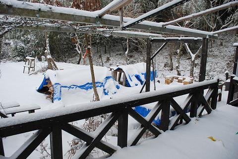 雪に覆われた庭