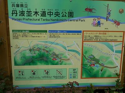 篠山 (3)