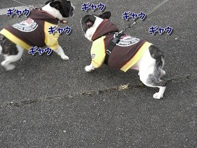 初遊び (2)