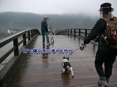 錦帯橋2 (1)