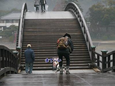 錦帯橋2 (2)