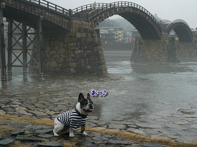 錦帯橋2 (12)