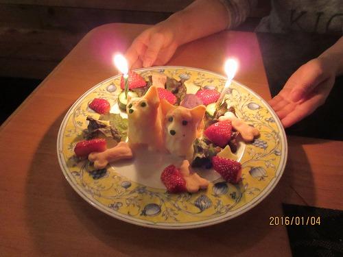モモとツバサのケーキ 前