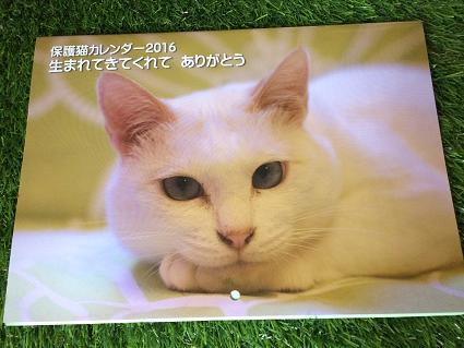 長崎猫の会のカレンダー