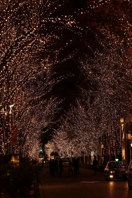 shuku-IMG_0637.jpg