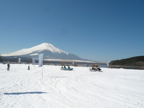 P1260008.jpg