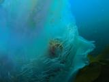 aksjflkajlfkajlfkjalkfdjalkjflakjfa (15)