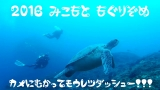 SnapShot115125525.jpg