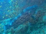 jfdsalkjfsalkjflkasjflkjasldkjsalkjfakj(8).jpg
