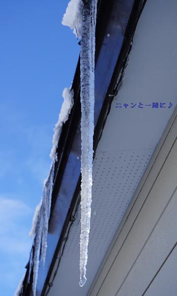 氷柱117