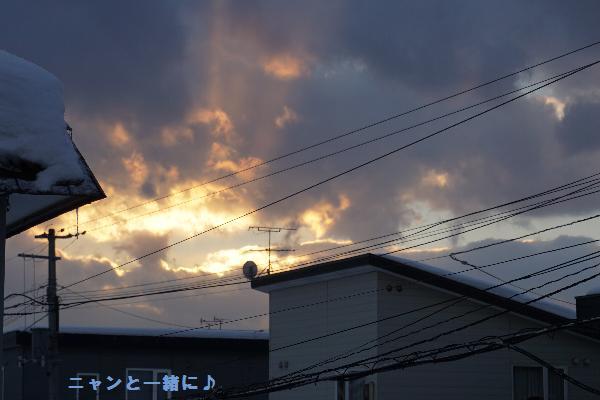 sora1620127.jpg