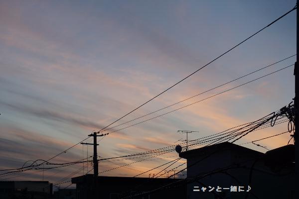 yuu16061213.jpg