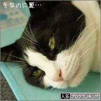 dai20151211_banner.jpg