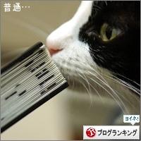 dai20151214_banner.jpg