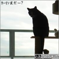 dai20151217_banner.jpg