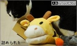 dai20151218_banner.jpg