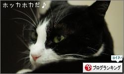dai20151221_banner.jpg