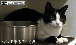 dai20151225_banner.jpg