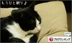 dai20160112_banner.jpg