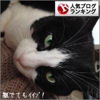 dai20160115_banner.jpg