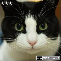 dai20160118_banner.jpg
