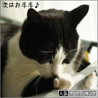 dai20160119_banner.jpg