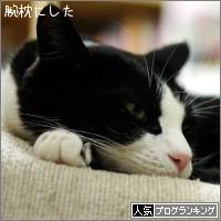 dai20160127_banner.jpg