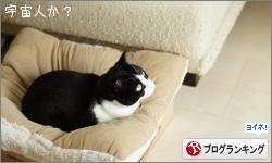 dai20160201_banner.jpg