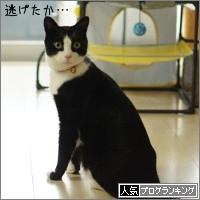 dai20160202_banner.jpg