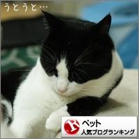 dai20160222_banner.jpg